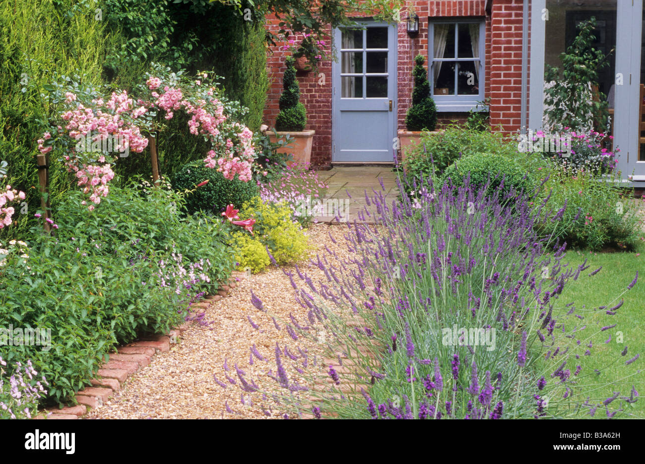 brick and gravel path borders with lavender rosa 'the fairy' house