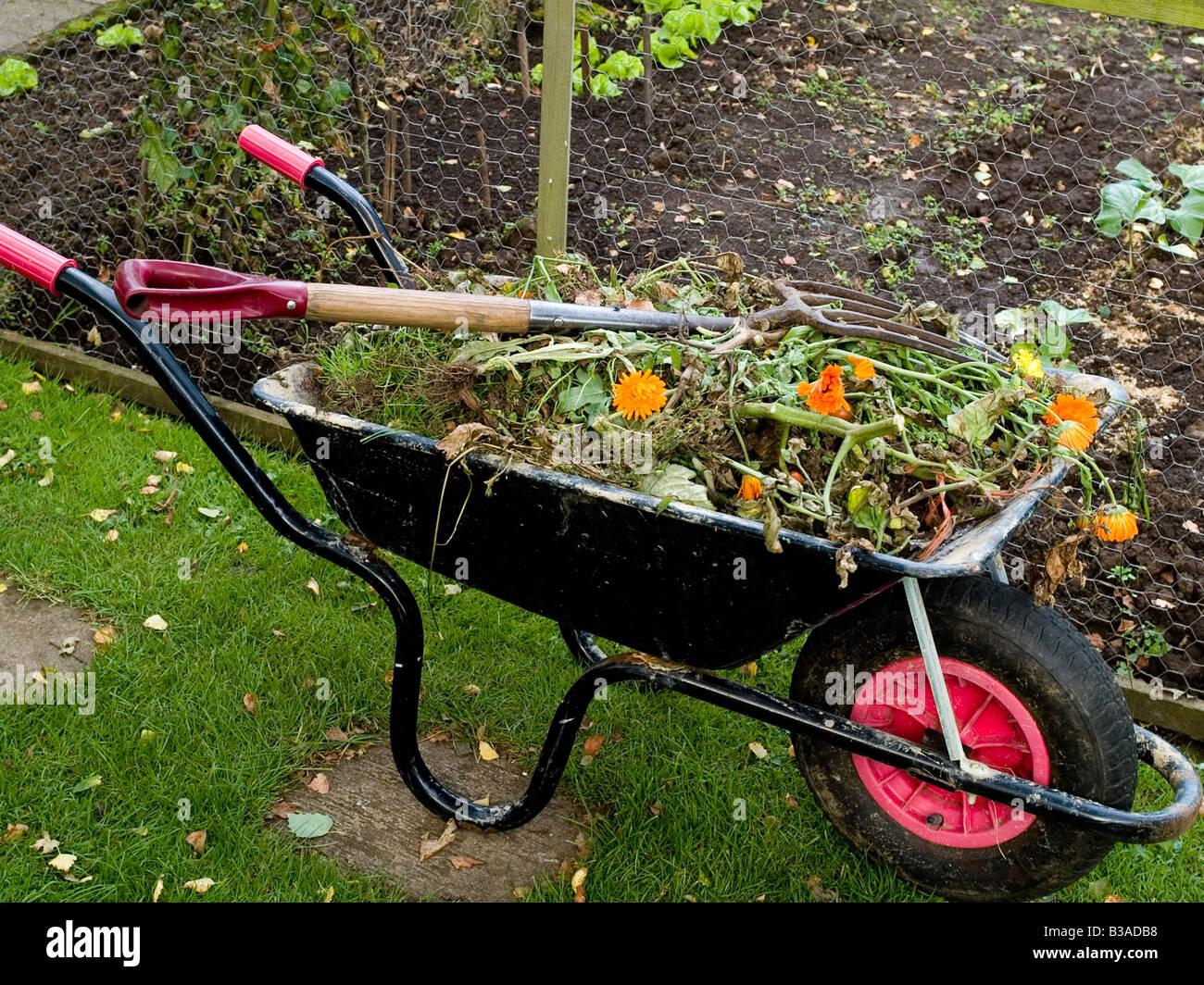 Wheelbarrow With Weeds Garden Gardening   Stock Image