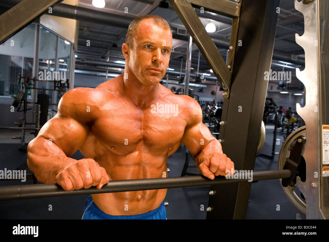 List of Synonyms and Antonyms of the Word: steroid arms