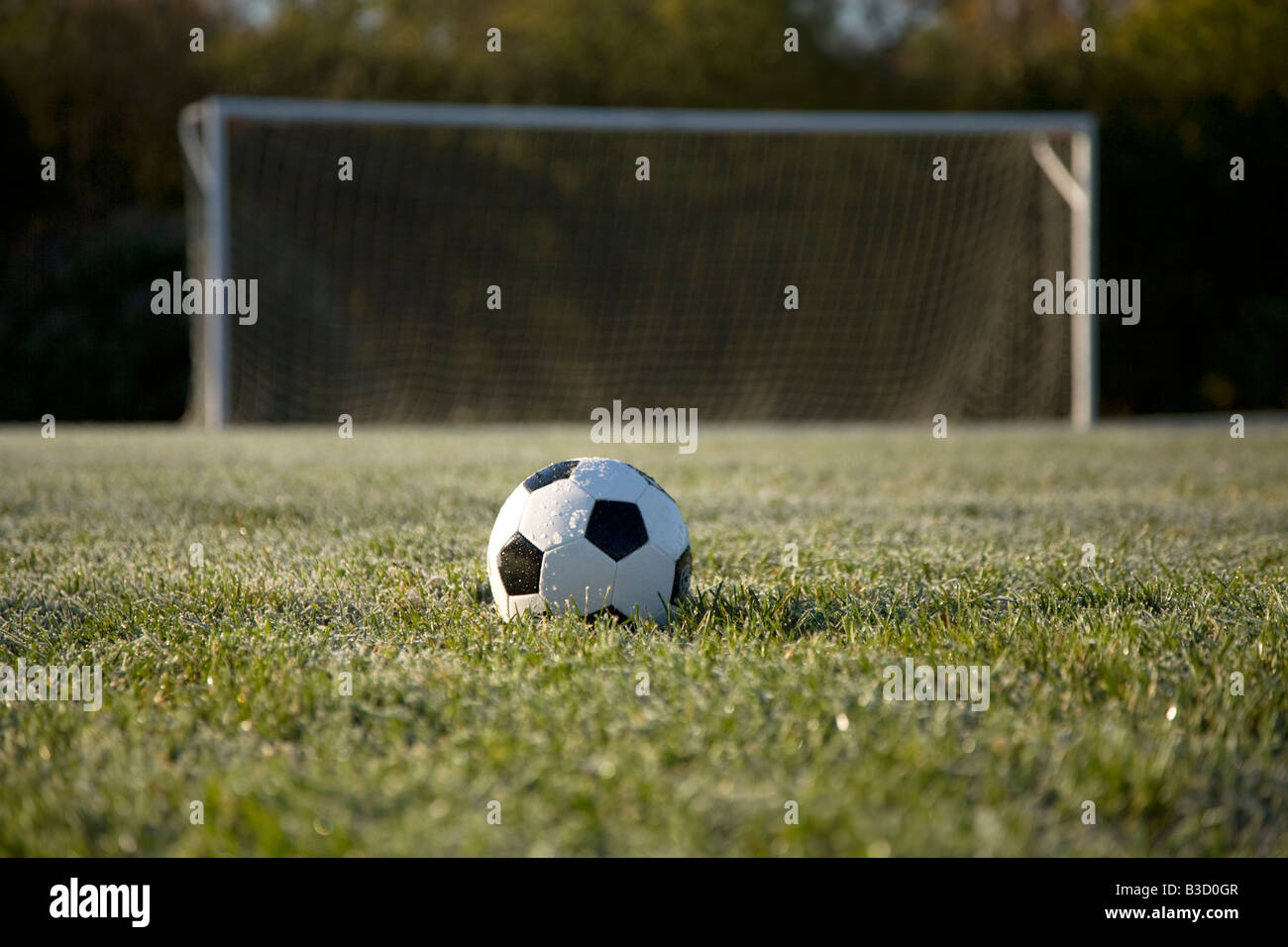 soccer ball field background wwwpixsharkcom images