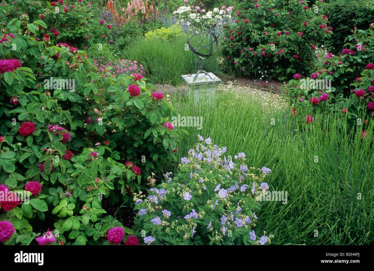Nice rose garden design garden design 10 for Garden design with roses
