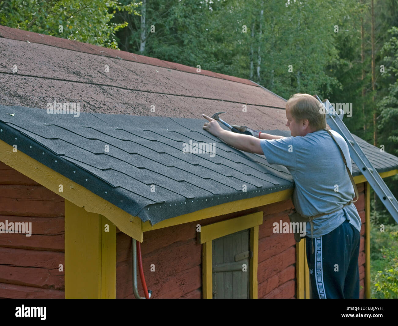 Stock Photo   Man Menting Renovating Remaking Roofing Cardboard Roofing Felt  On Roof Of An Old Red Block Cabin Hut In Finland