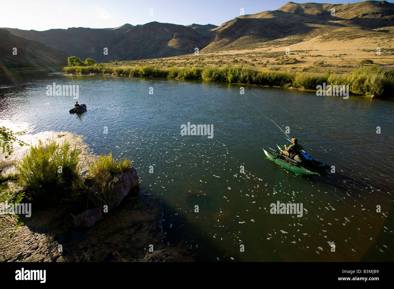 Fly fishing on the lower owyhee river a blue ribbon brown for Owyhee river fly fishing
