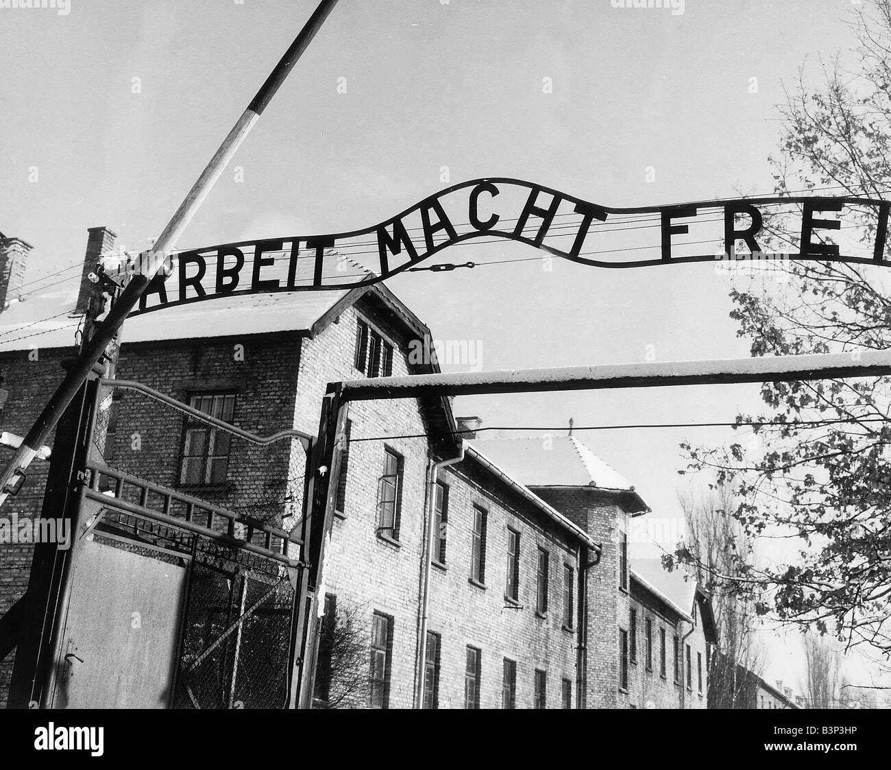 Where Was The Auschwitz Camp Located: Entrance To Auschwitz Concentration Camp March 1964 In