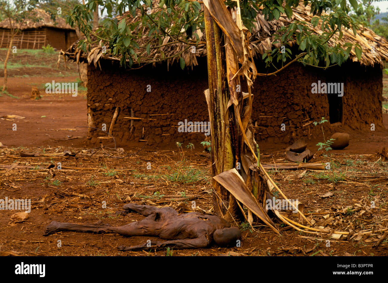 A Dead Body Lies Outside An Abandoned House Near The