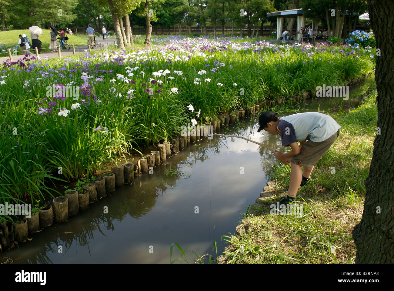 Boy fishing in a small creek tokyo japan stock photo for Small creek fishing