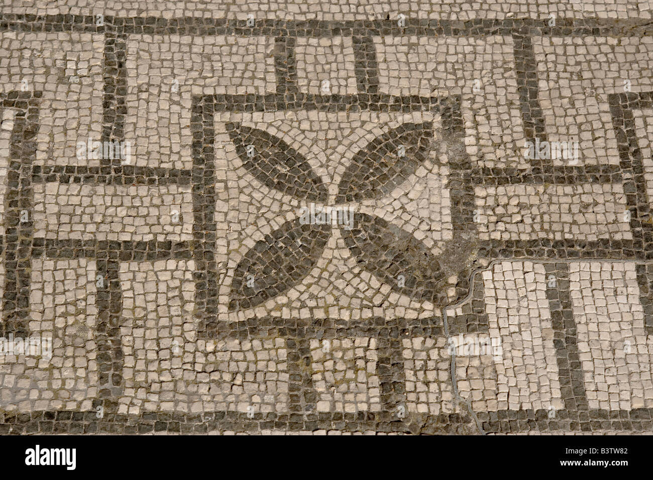 Europe italy campania pompeii mosaic floor patterns in for House of patterns