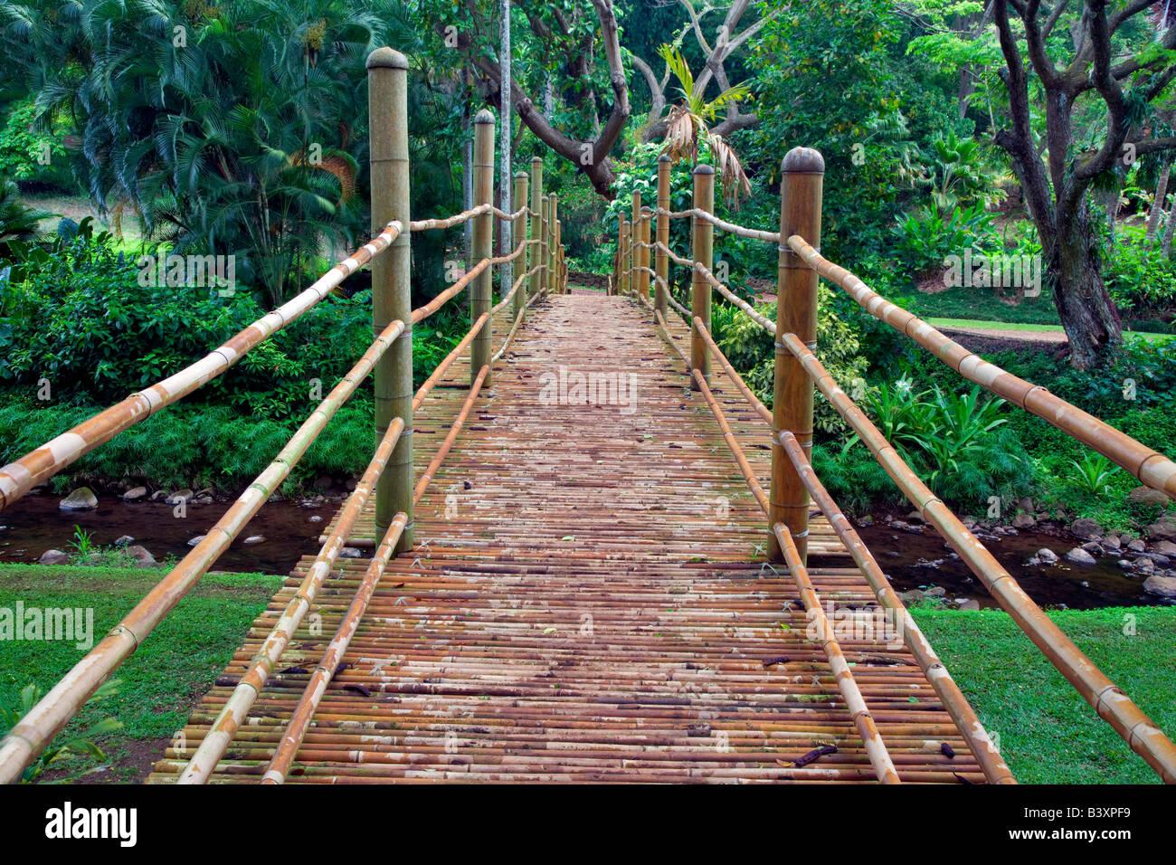 Bamboo Bridge In National Tropical Botanical Garden Kauai Hawaii
