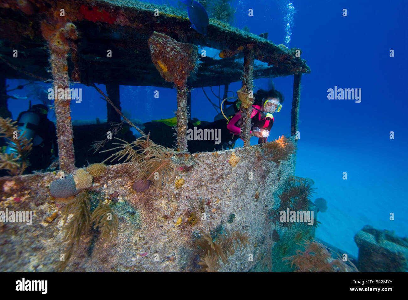 Diver At Wreck Doc Poulson Grand Cayman Caribbean Sea Cayman - Caribbean sea cayman islands