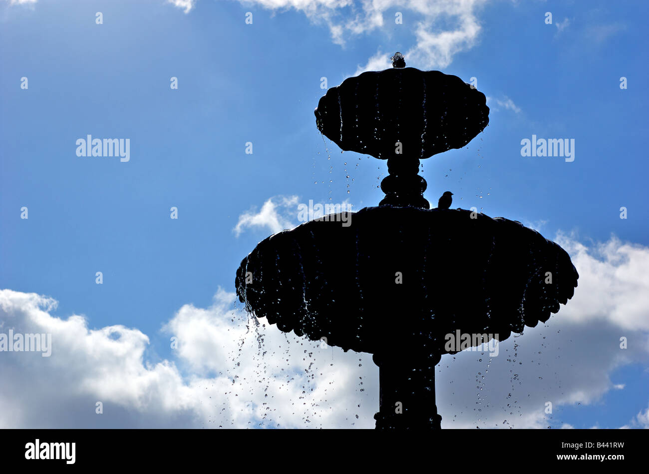 Silhouette Of Bird On A Water Fountain In Brooklyn New York