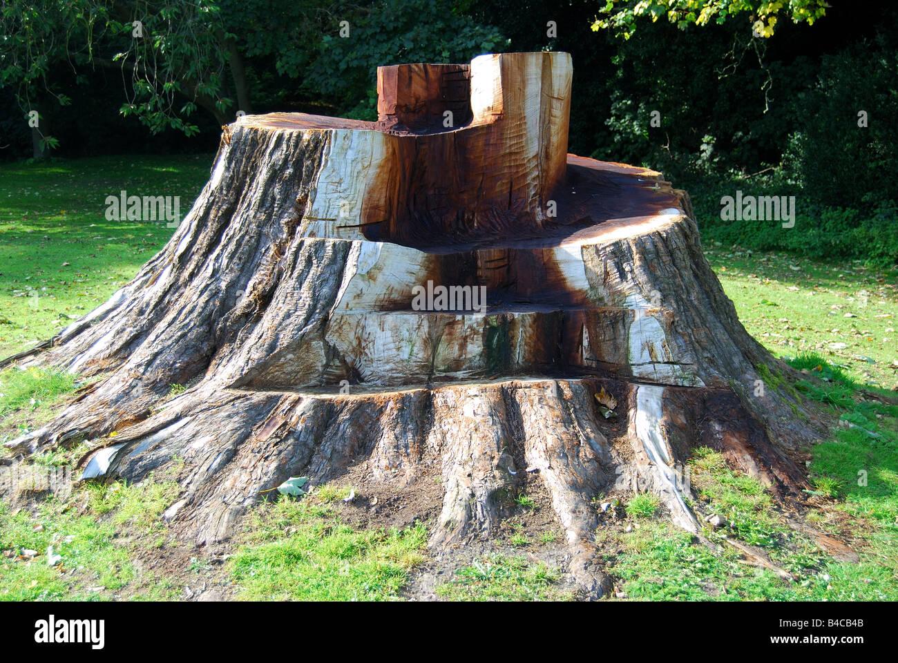 Tree Stump Seats Tree Stump Cut Into Seat Missenden Abbey Great Missenden Stock