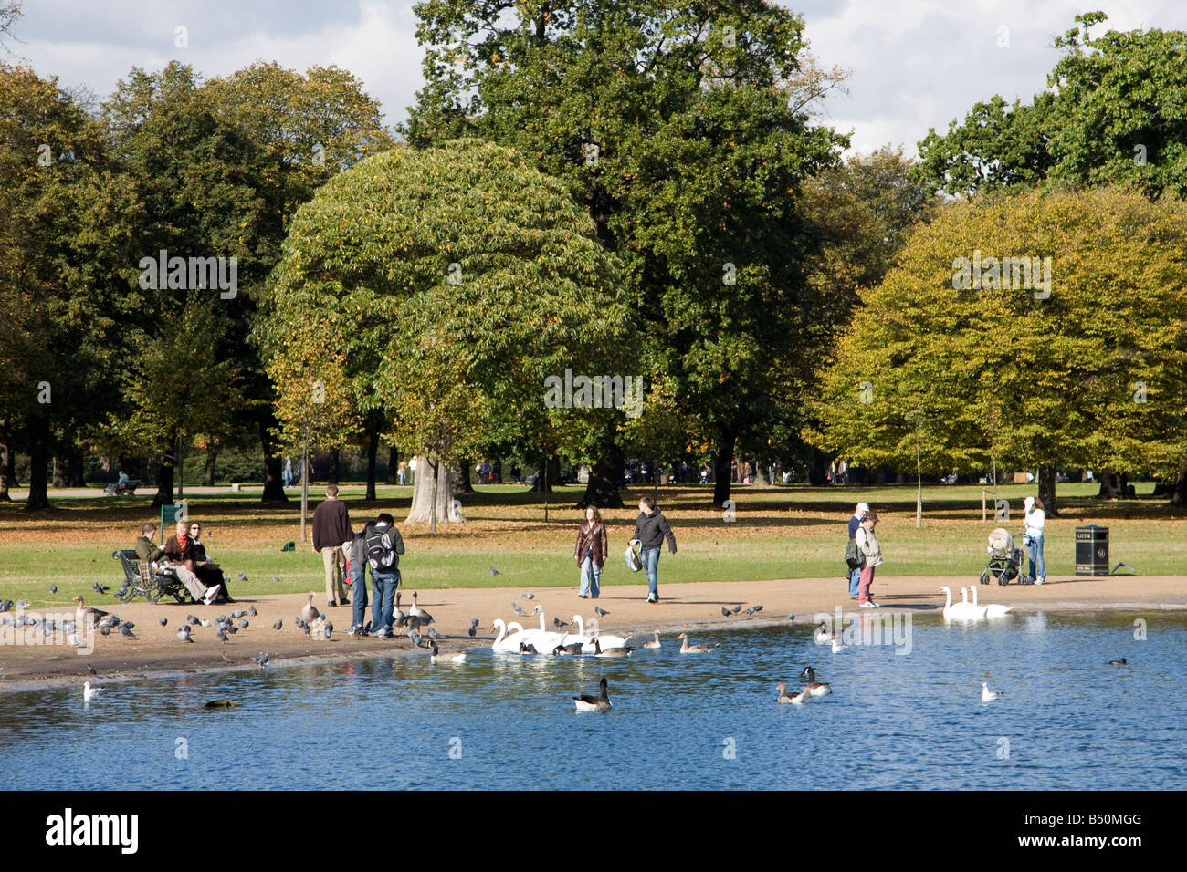 List of synonyms and antonyms of the word kensington park for Kensington park