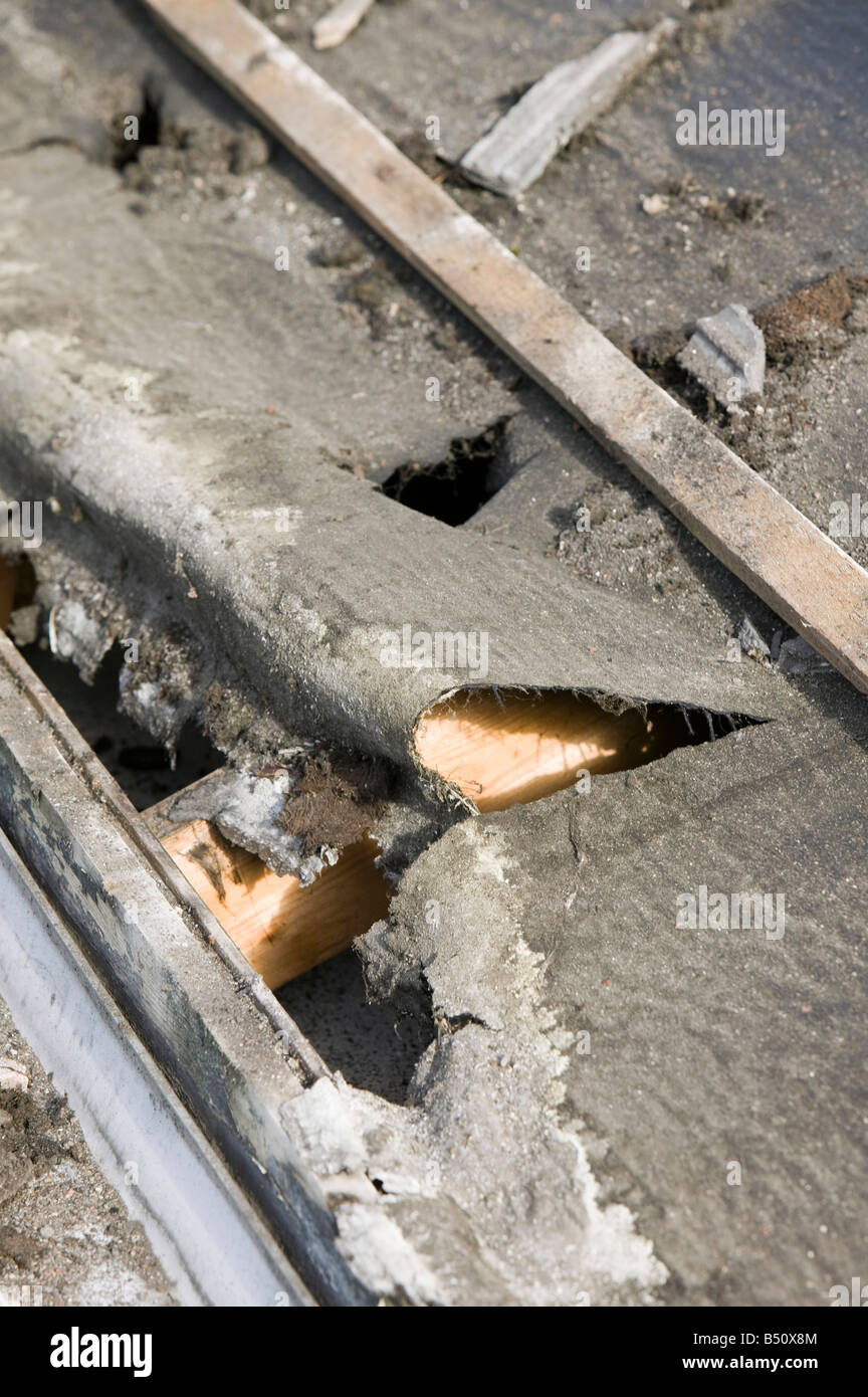 House Roof Leaking old rotten felt on a leaking house roof stock photo, royalty free