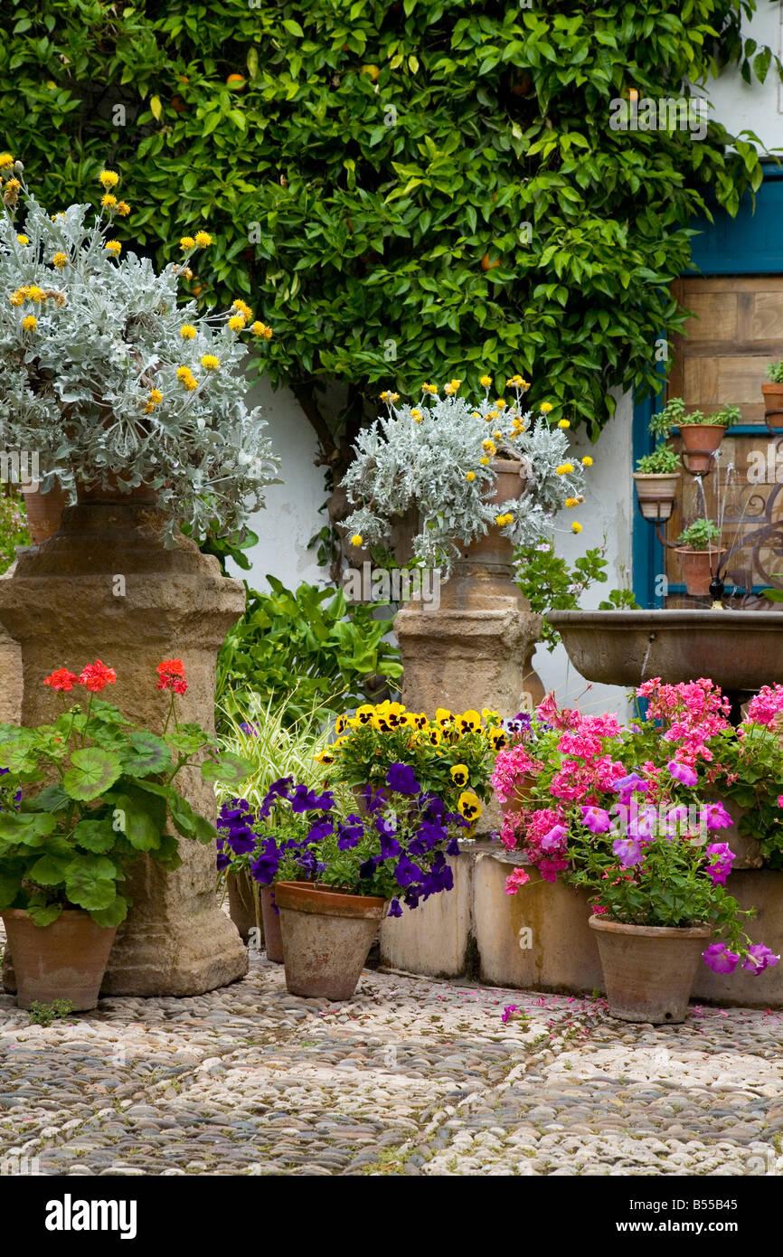 Plant Pots In A Mediterranean Courtyard Garden Part Of The