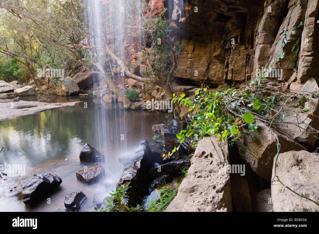 mitchell river national park pdf