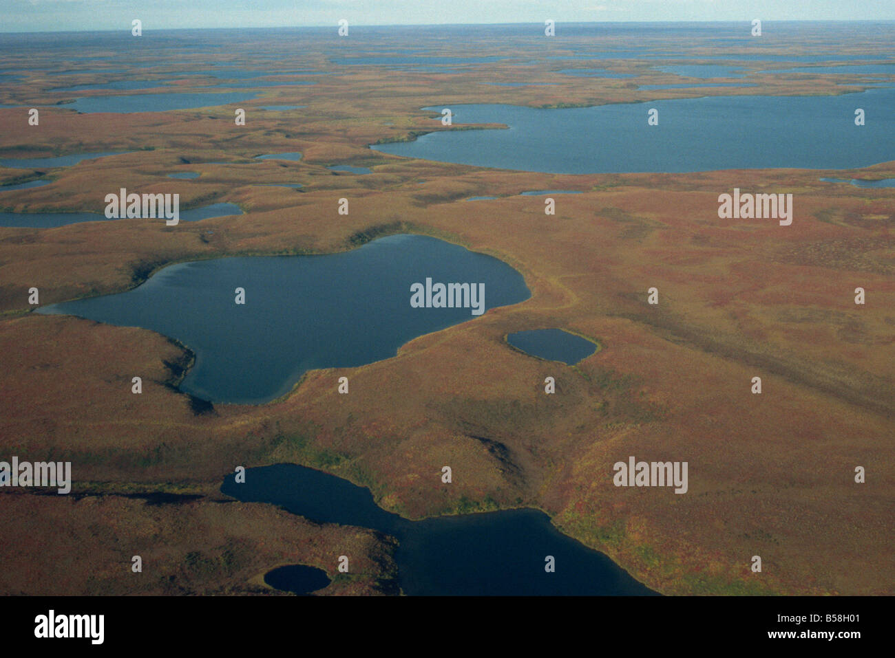 Tundra Wetlands Arctic Coast Northwest Territories Canada North Stock Photo  Royalty Free Image