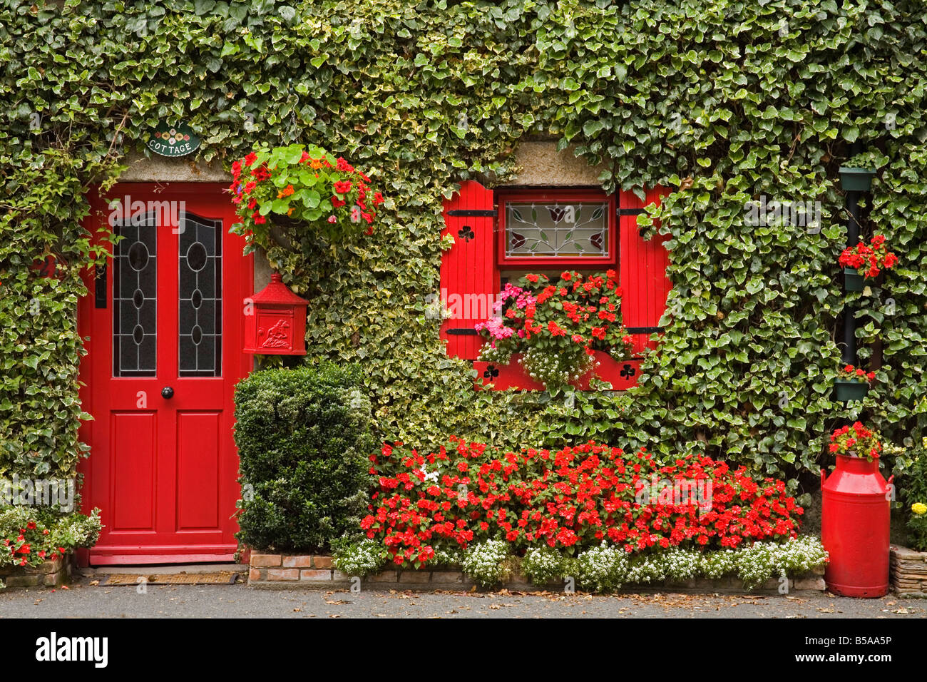 Ivy Covered Cottage, Town Of Borris, County Carlow