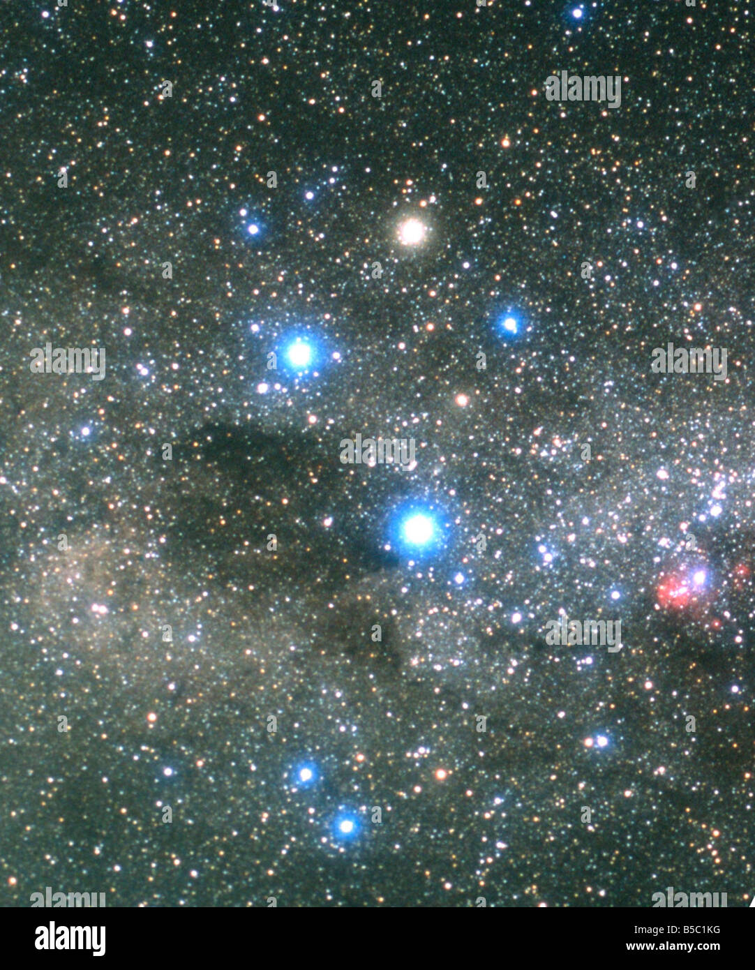 The Southern Cross and Coalsack Nebula Stock Photo ...