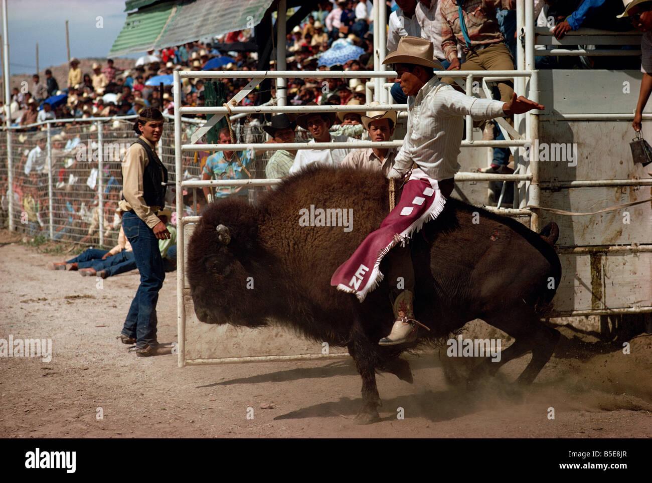 Rodeo Riding Gallup New Mexico Usa North America Stock