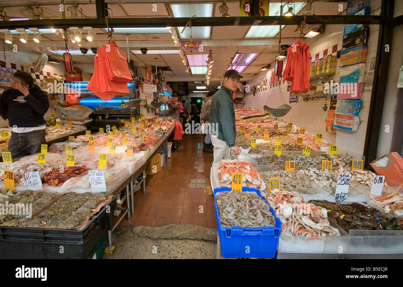 Fish shop in canal street chinatown new york usa stock for Chinatown fish market