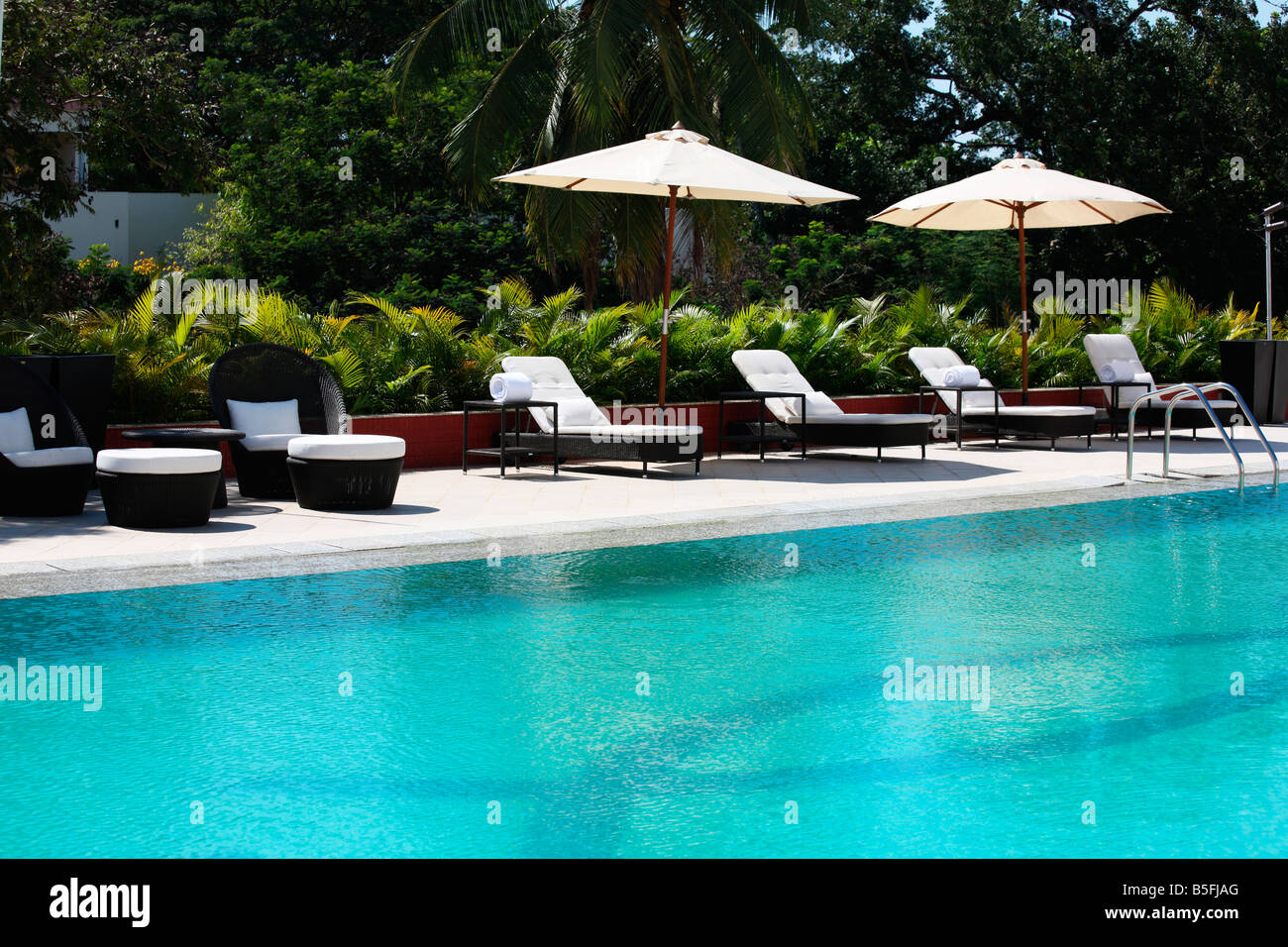 Swimming Pool With Deck Chairs In A Five Star Hotel In Kerala India Stock Photo Royalty Free