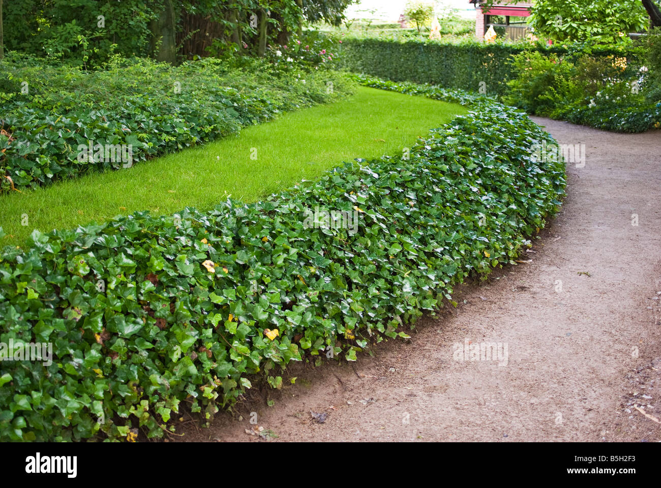 Landscaping Edging Plants : Photo effective use of ground cover plants as lawn edging in france
