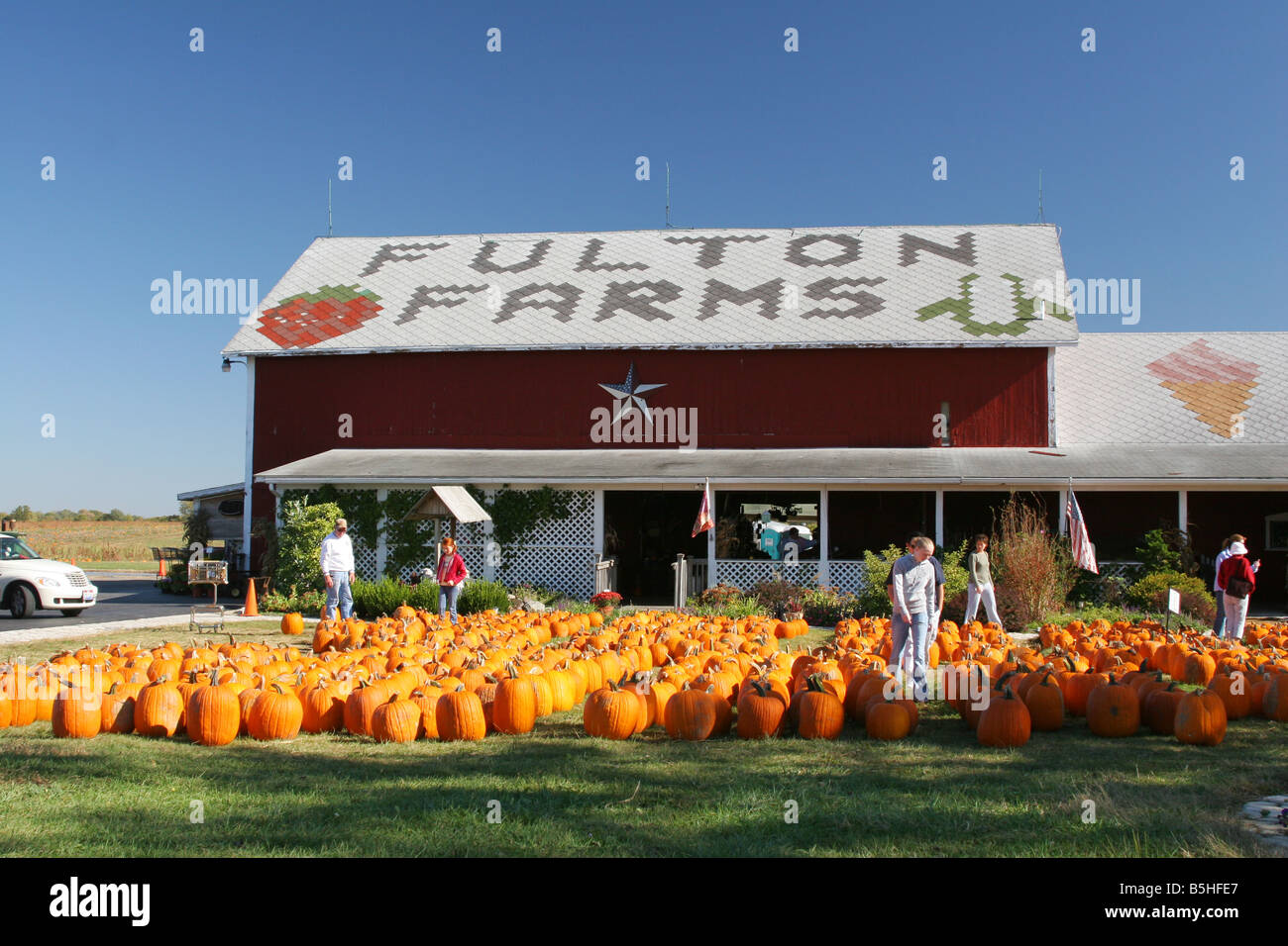 How to store pumpkins - Fulton Farms Store Pumpkins For Sale Fulton Farms Troy Ohio