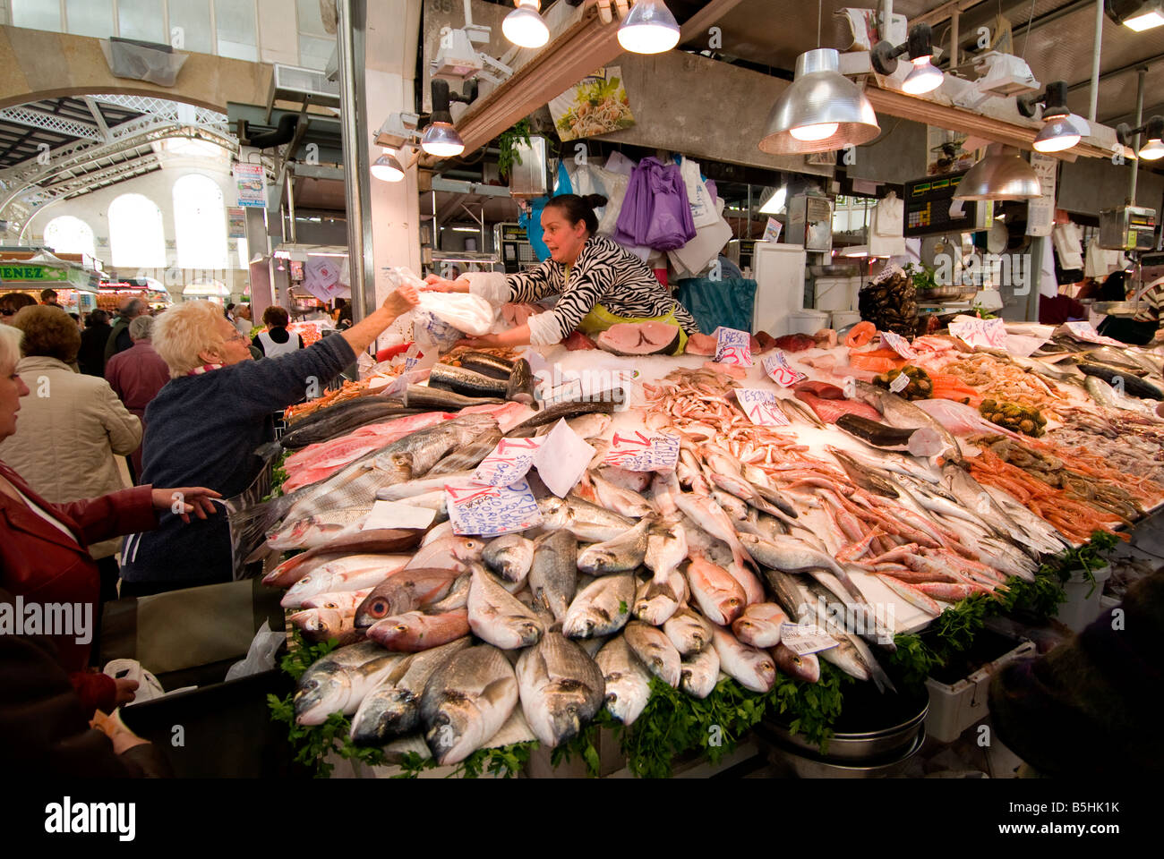 Spanish people buying fish in the central market mercado for Central fish market