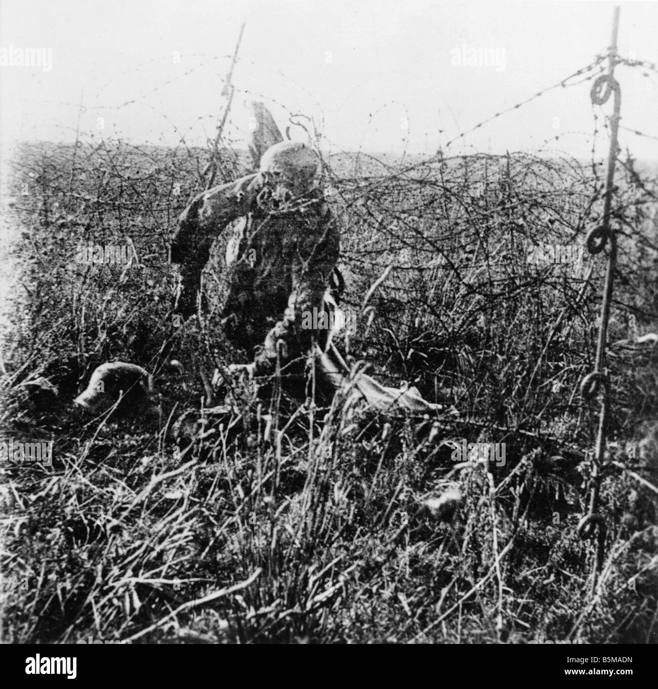 Modern Crawling Through Barbed Wire Wwi Pattern - Wiring Diagram ...