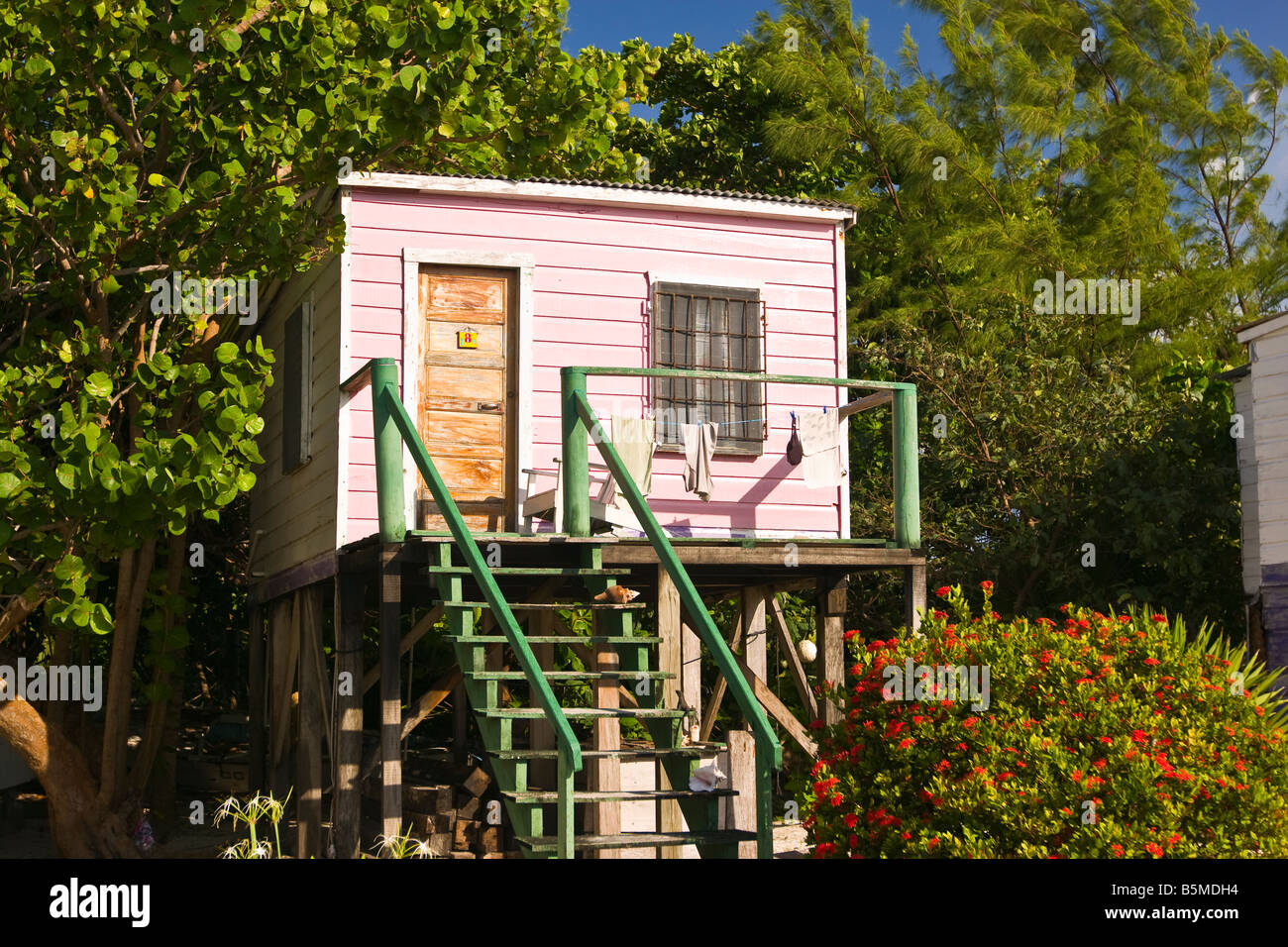 Caye caulker belize cabin on stilts at ignacio 39 s beach Log cabin homes on stilts