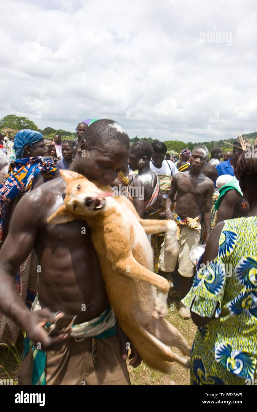"""Résultat de recherche d'images pour """"evala dog eating"""""""