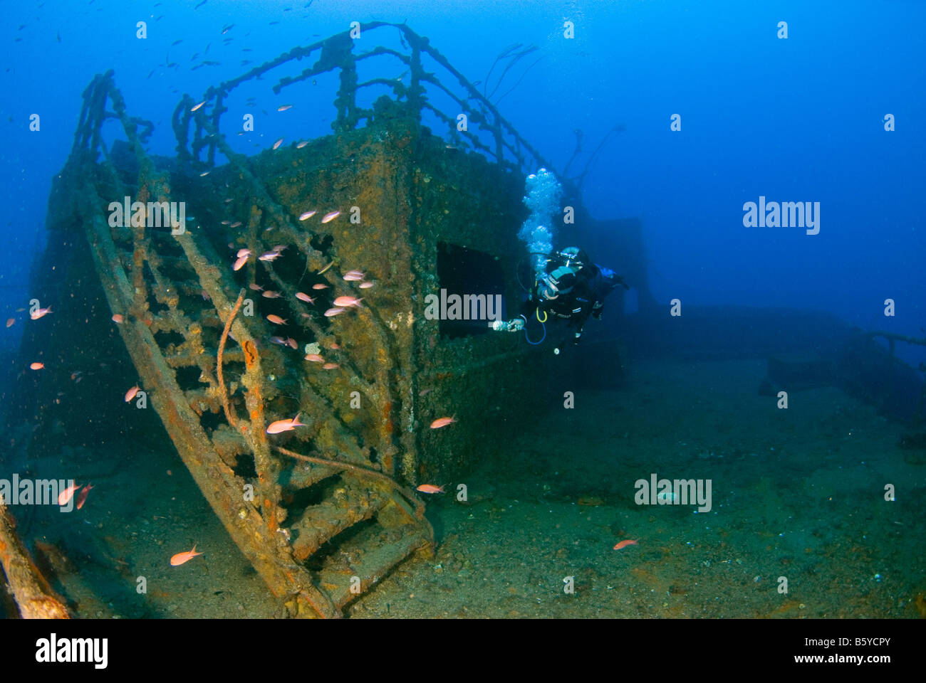 Wreck of haven arenzano genova liguria italy mediterranean and stock photo royalty free - Tech dive arenzano ...