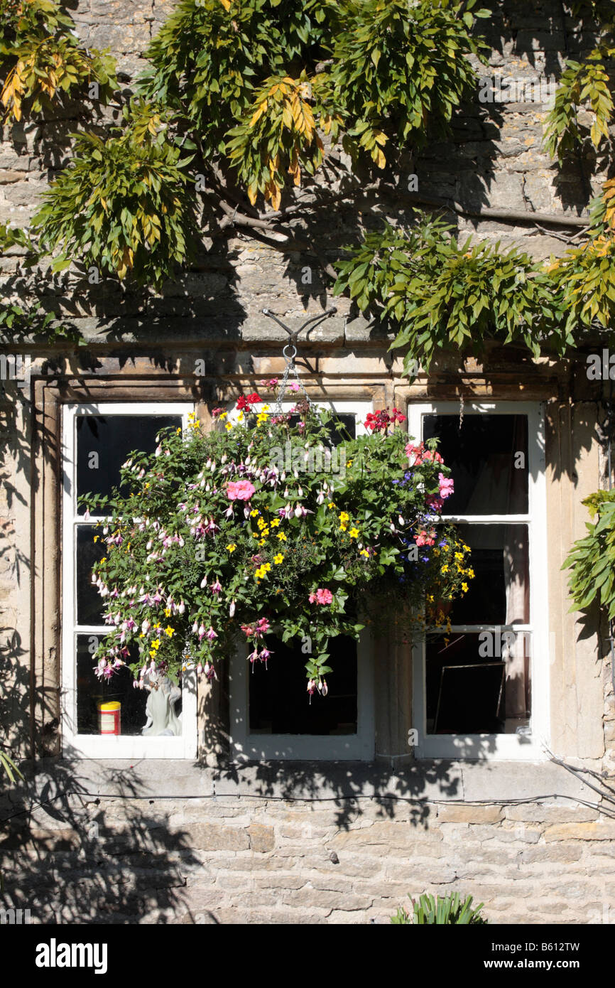 Hanging Basket Outside A Window Of A Lime Washed Cottage In Lacock  Wiltshire England