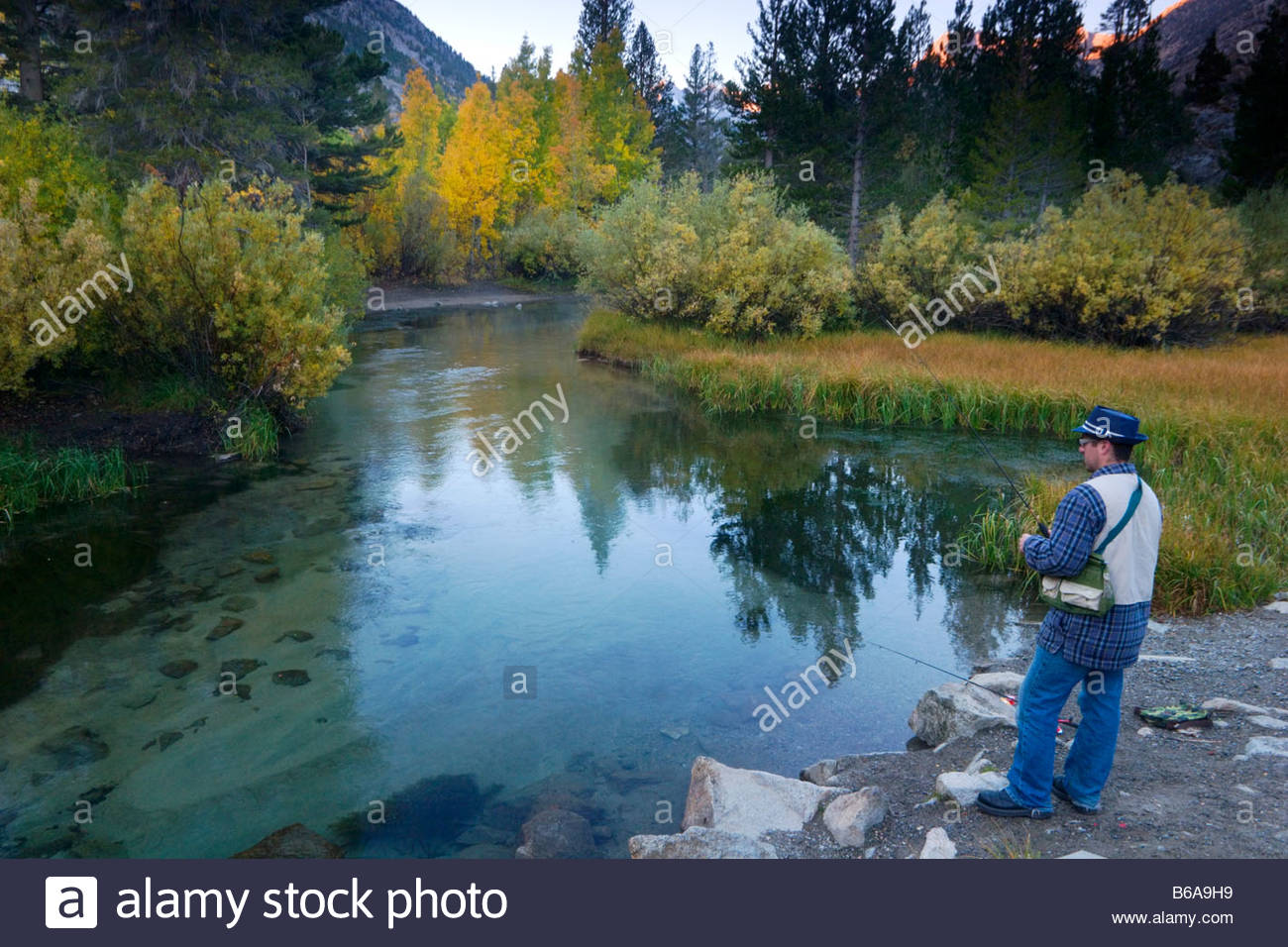 Trout fisherman fishing in middle fork bishop creek for Bishop ca fishing