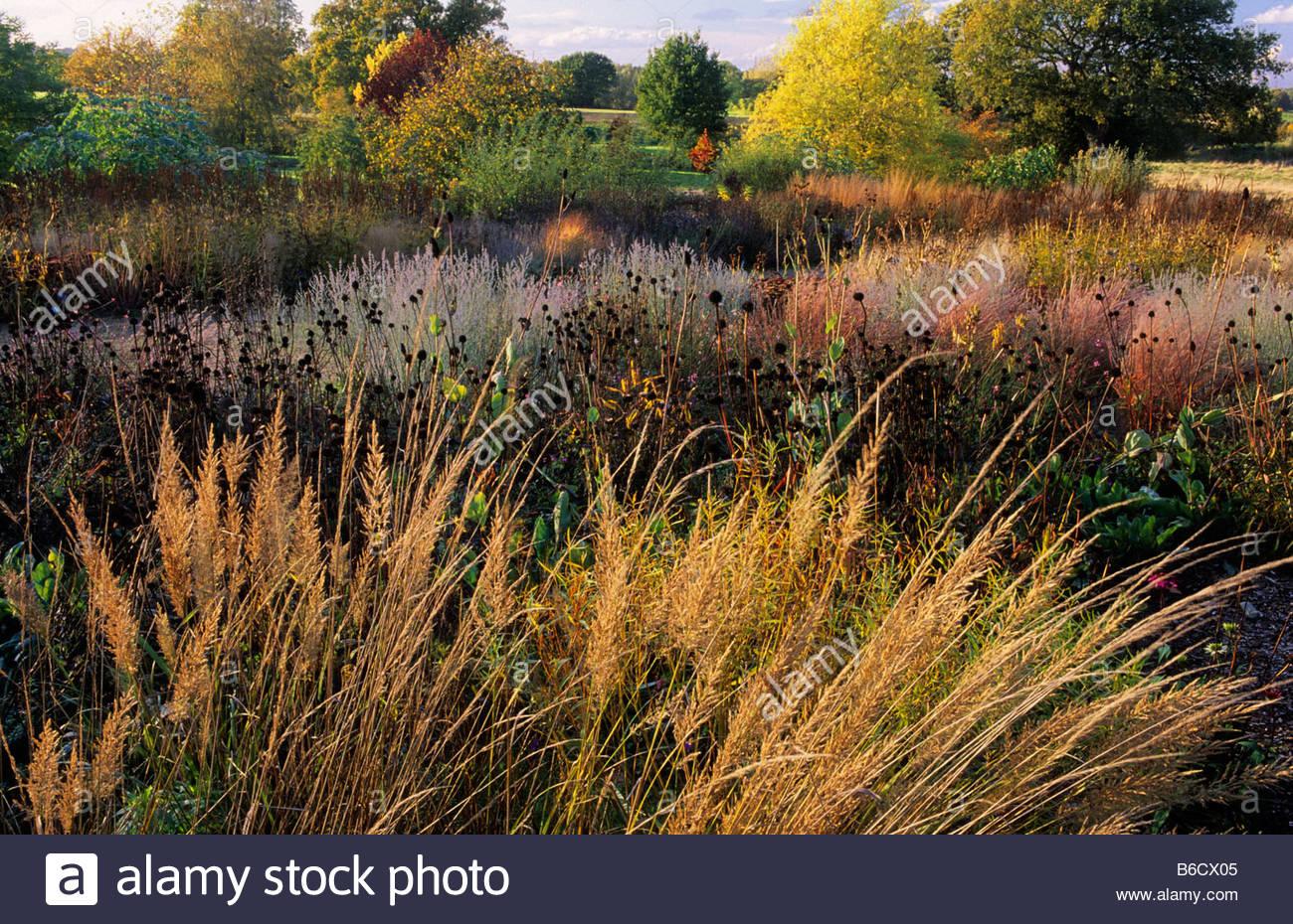 Rhs Wisley Surrey Design Piet Oudolf Prairie Planting