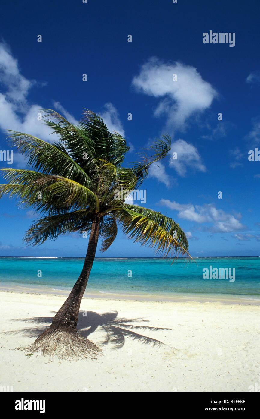 Coco Palm Beach Resort Guam