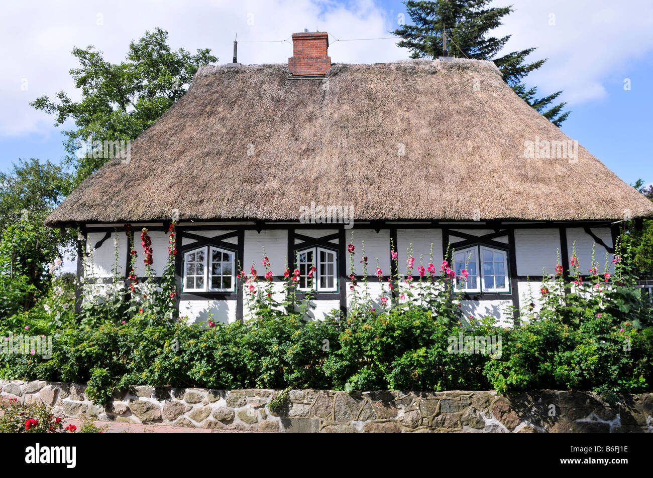 thatched roof house in sieseby schlei schleswig holstein germany stock photo royalty free. Black Bedroom Furniture Sets. Home Design Ideas