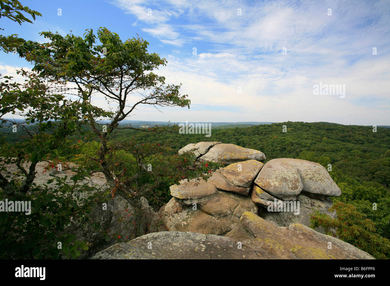 Sandstone Rocks In The Garden Of The Gods Shawnee National Forest Stock Photo Royalty Free