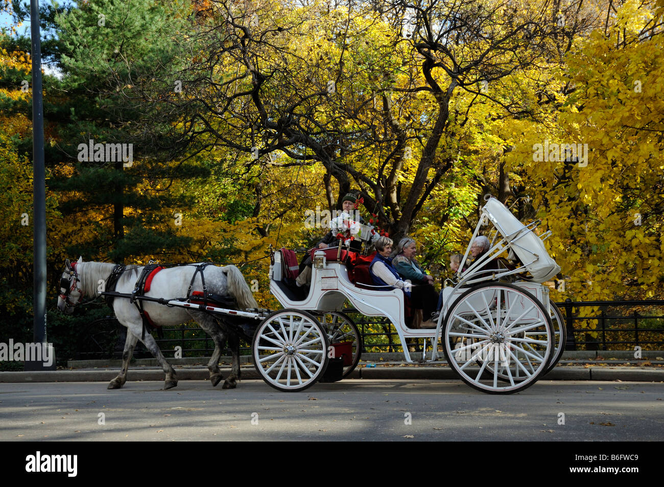 central park new york america usa horse drawn tourist taxi carriage stock photo royalty free. Black Bedroom Furniture Sets. Home Design Ideas