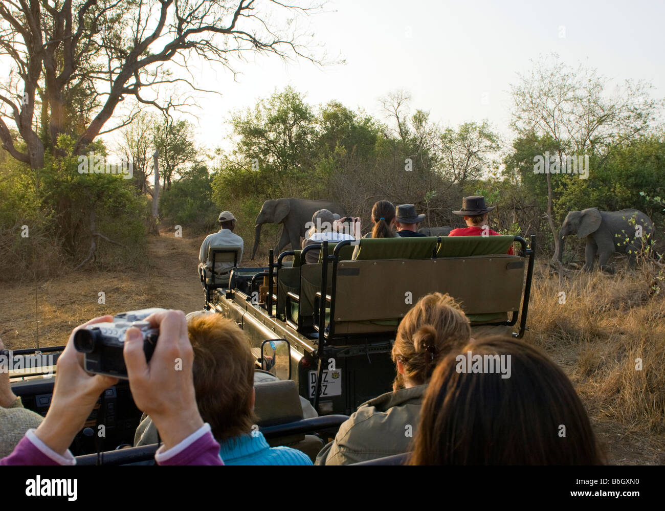 Game Drive Adventure South-Africa Jeep Vehicle People