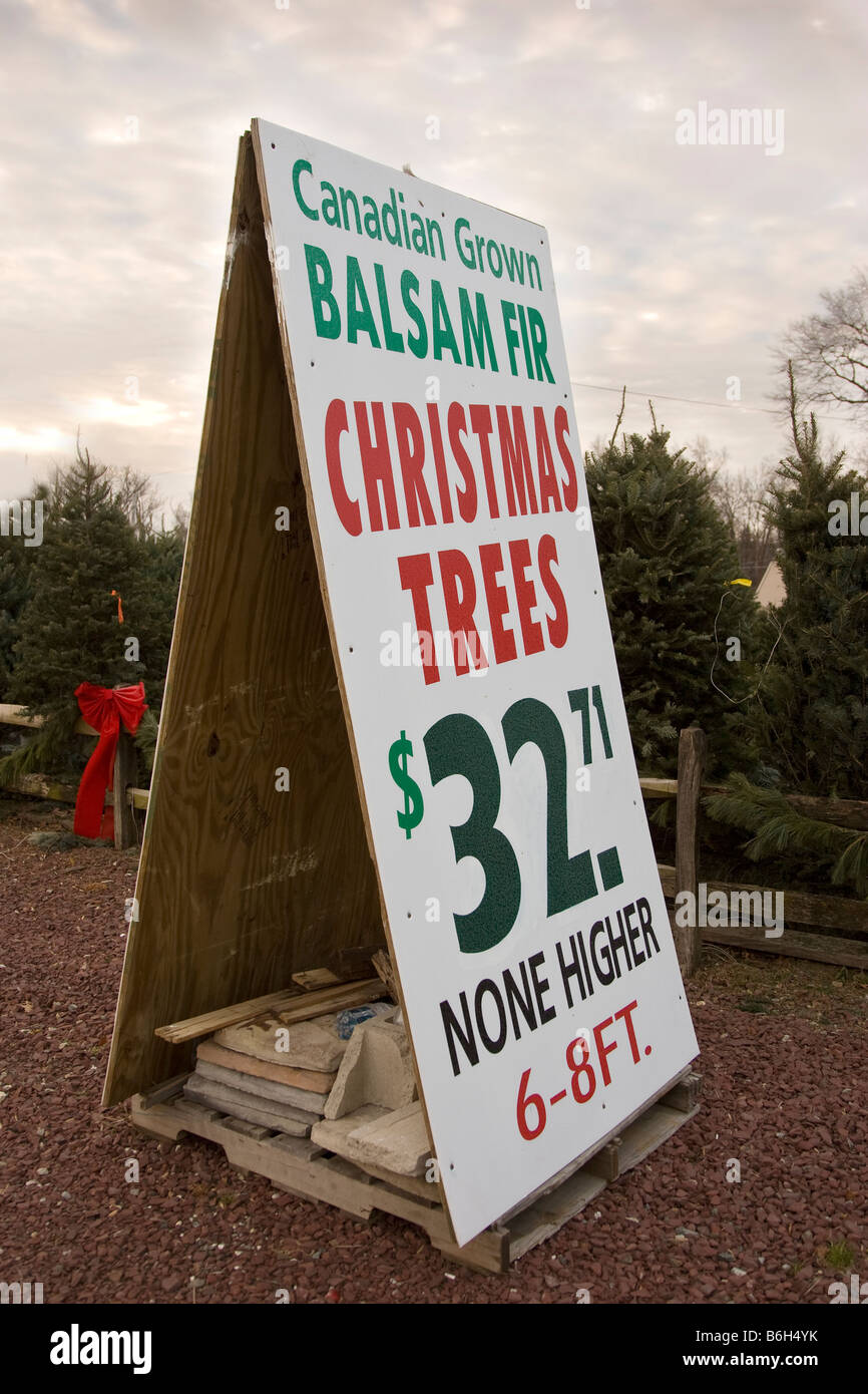 Christmas trees for sale sign Stock Photo, Royalty Free Image ...