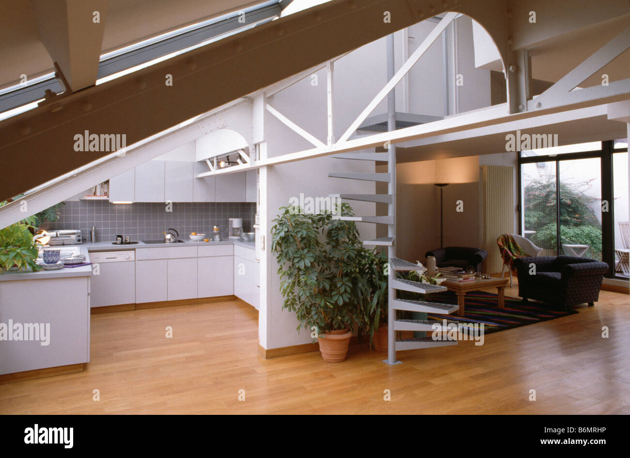 Wooden Flooring And Tall Houseplant Beside Spiral Staircase In