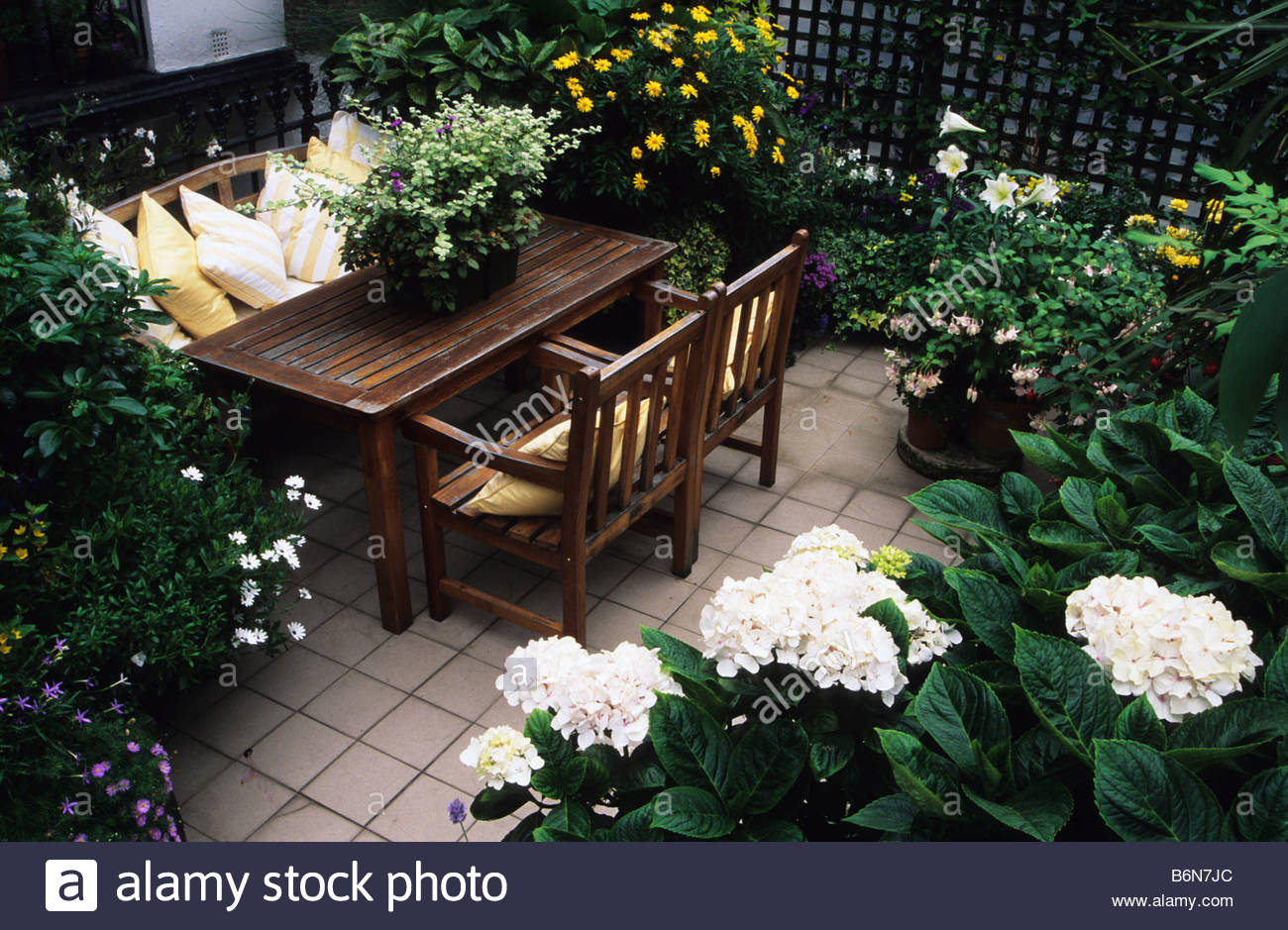 Plants for rooftop gardens - Stock Photo Roof Garden London Hydrangea Macrophylla Shrubs And Plants In Containers Table Chairs Trellis
