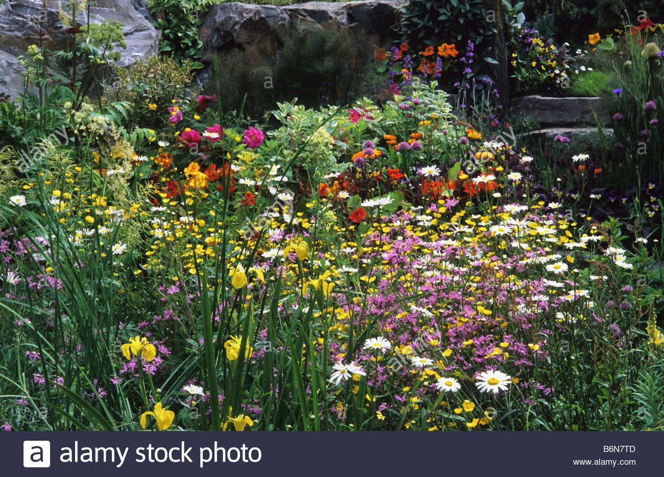 Cottage garden plants cottage garden top 10 plants for a for Cottage garden plants
