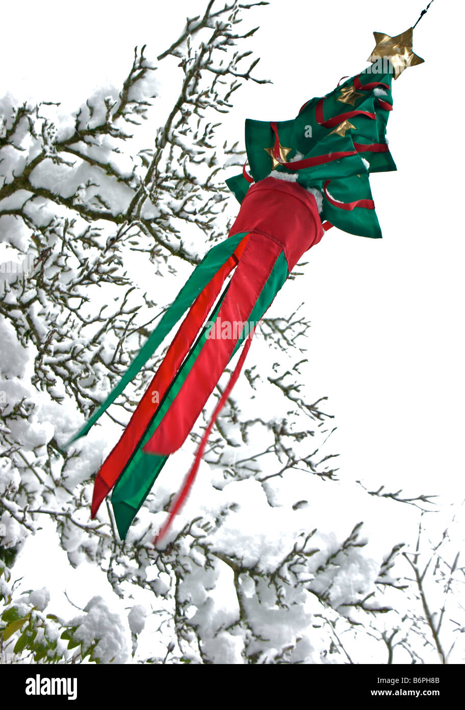 Christmas Tree Windsock In Snowstorm With Backdrop Of Snow Laden Magnolia  Tree Branches And Trails Of Falling Snow