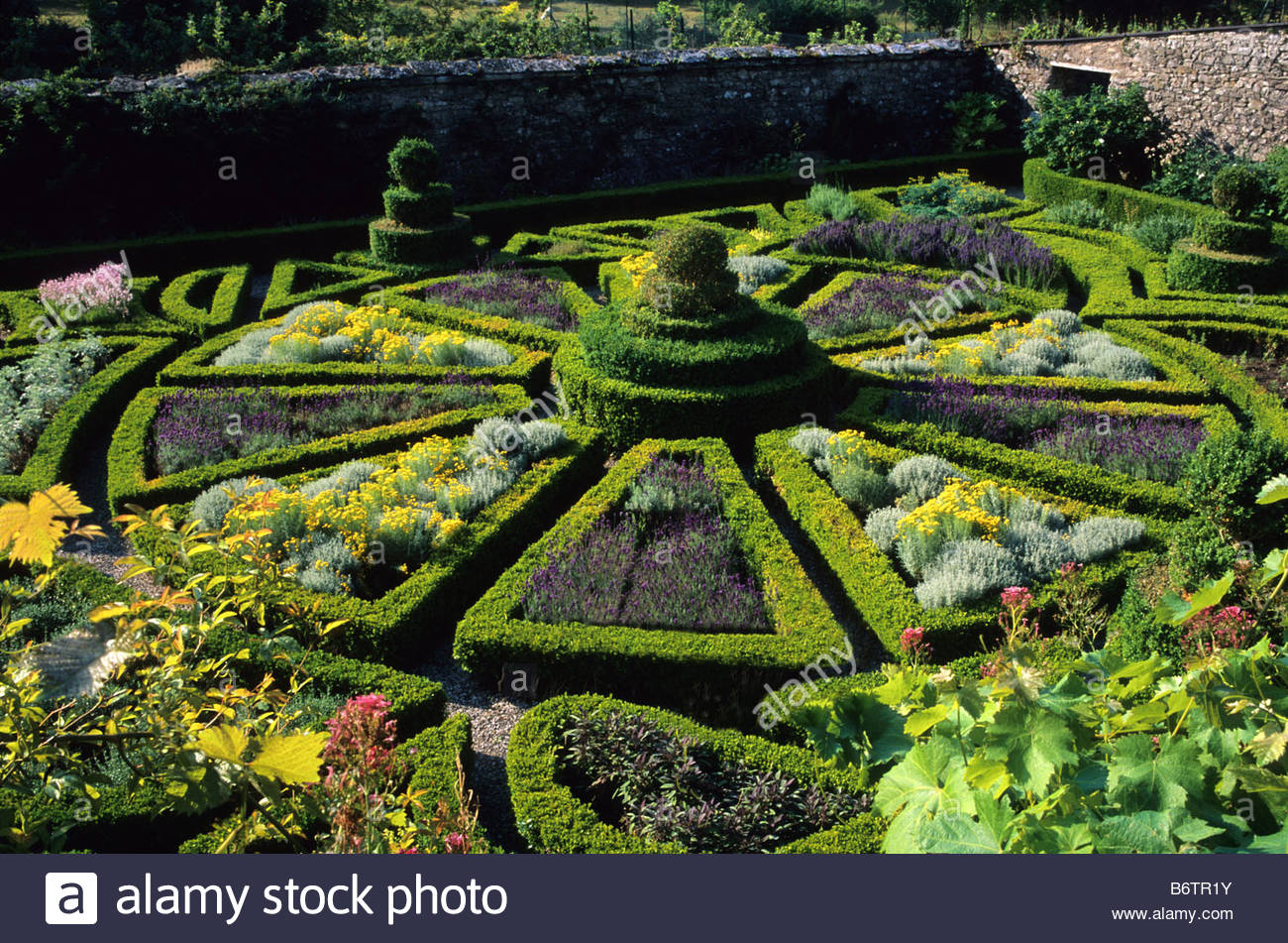 Bodysgallen north wales walled knot garden with herbs for Knot garden designs herbs