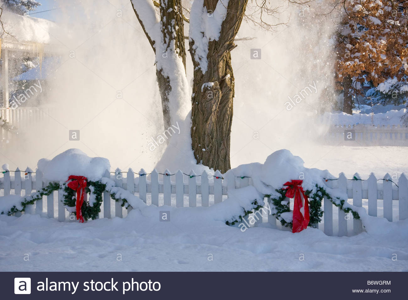 Christmas Wreaths Decorate A White Picket Fence As Snow