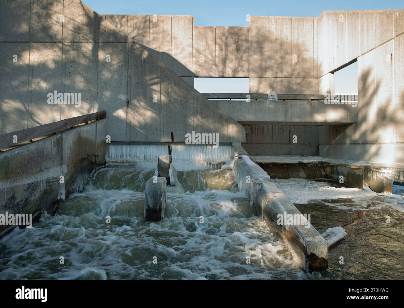 Fish ladder on the grand river in grand rapids michigan on for Grand river fishing