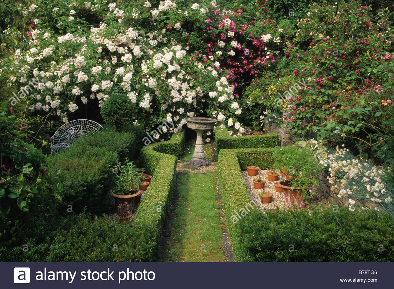 Alan Titchmarshs Garden Hampshire Scented Garden Climbing Roses With  Chamomile Path Boxwood Hedges And Bird Bath