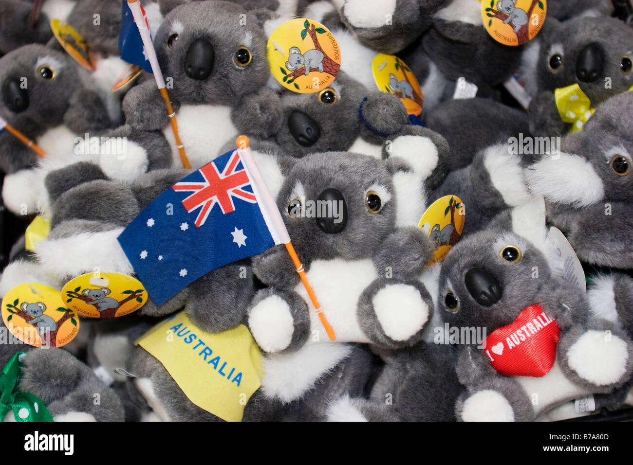 Koala bears stuffed toys souvenirs Australia Stock Photo